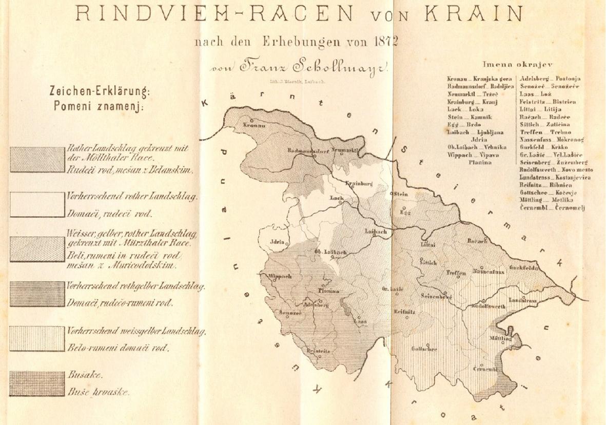 Slika 1: Prikaz raširjenosti različno obarvanega goveda po posameznih okrajih (Schollmayr, 1872)