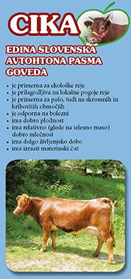 Zloženka cika - slovenska